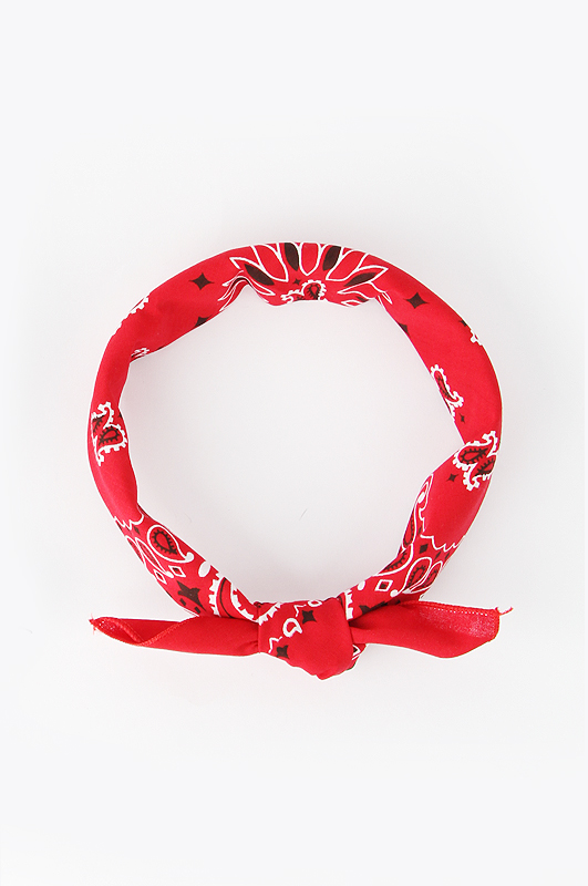 HAV A HANKTraditional Paisleys Bandana Red