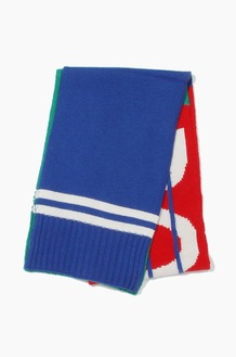 POLO Bring It Back Stadium Scarves Green Multi